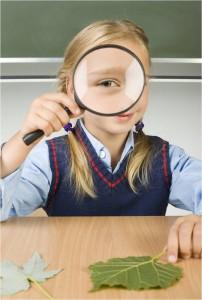Sisteme de responsabilitate publică în administrarea învăţământului