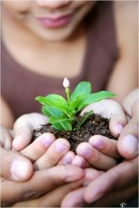 Comunicarea eficientă dintre familie și grădiniță
