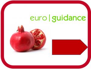 Euroguidance România
