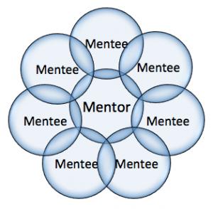 Program de mentorat pentru directorii de unităţi de învăţământul preuniversitar